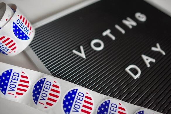 Blue Wave Voiceover Vote hard. Vote often